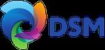 Dsm logo 01 original