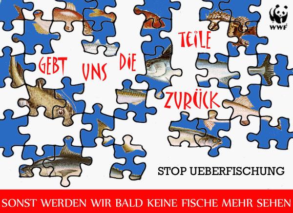 fisch puzzle