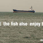 let the fish also enjoy the sea
