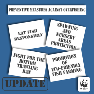 Preventive measures against overfishing