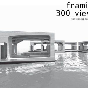 framing 300 views