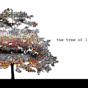 the tree of life project