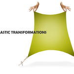 ELASTIC TRANSFORMATIONS