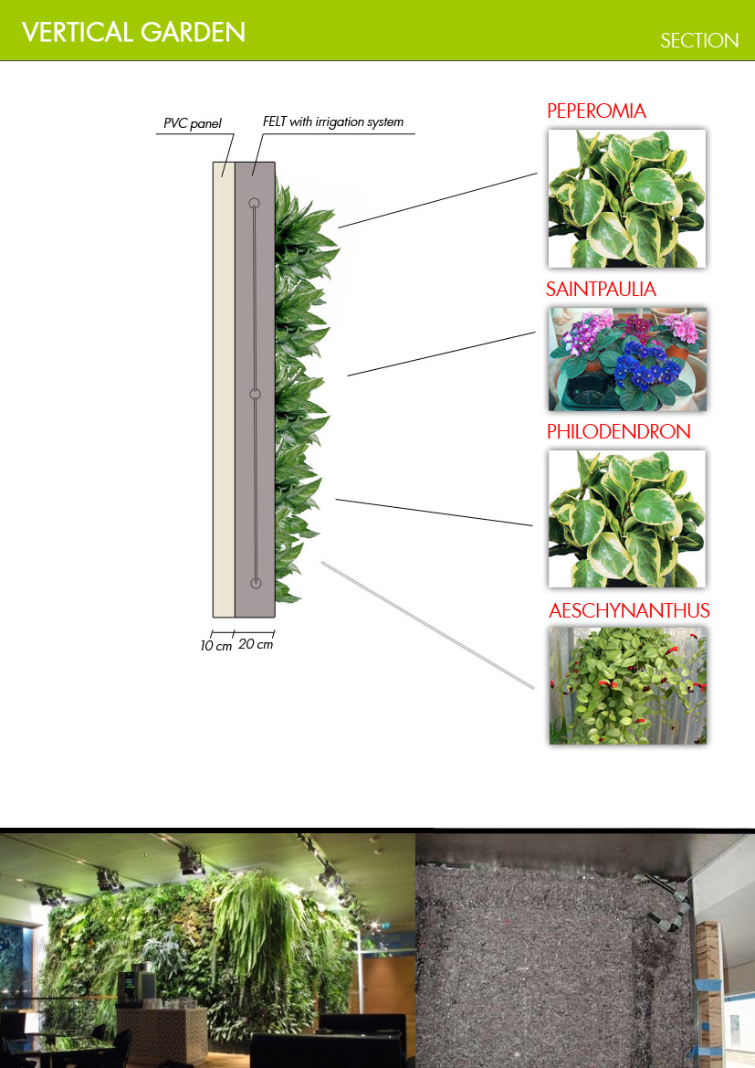 Jovoto simplicity vertical garden restaurant for Garden sectioning ideas