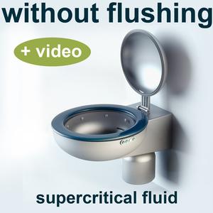toilet  without flushing