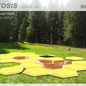 MITOSIS  picknick mat