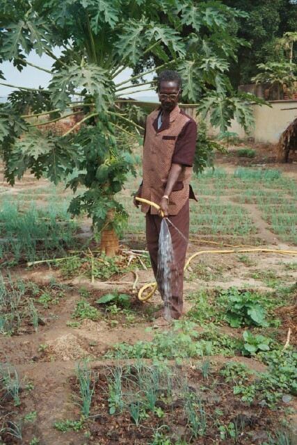 Sub150 in mali watering garden bigger