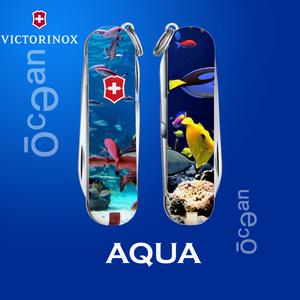 AQUA(ocean)
