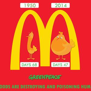 EVOLUTION FOODS