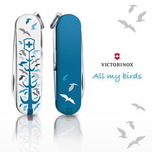 All my birds