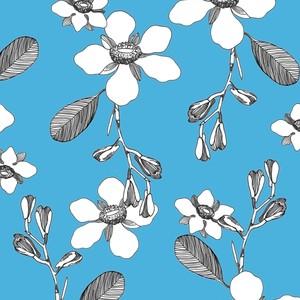 DogwoodBlossom