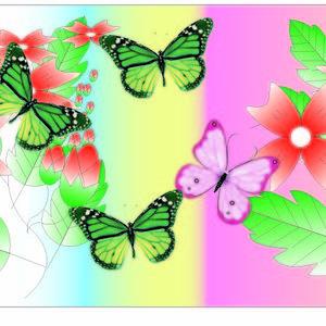 Butterfly on Garden
