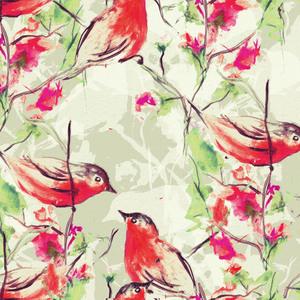 Birdies Romance