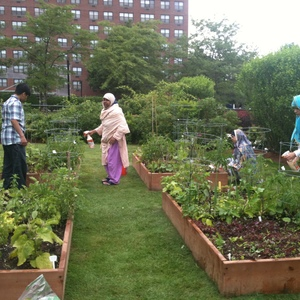 Sustainable  & Local Gardens for All