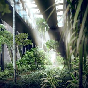 Tropical Arboretum