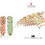2015: Victorinox celebrating Science.New Tileable Pentagonal Shape