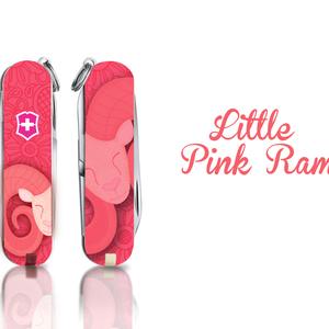 Little Pink Ram