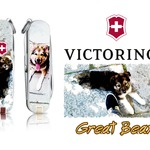 Victorinox Great Bear