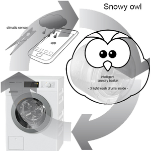 Snowy owl - a smart wash system