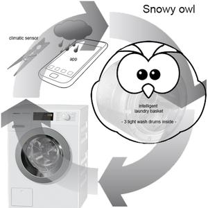Snowy owl - a smart wash system