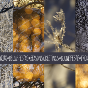 Frost & Fairy Lights Collage / blue