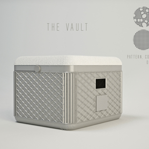 The VAULT - secure, comfortable and portable!