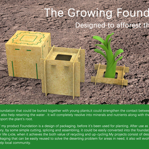The Growing Foundation